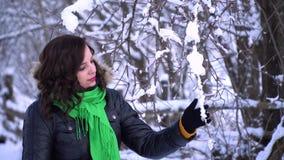 Den unga härliga flickan i vinterskog flickan ser dettäckte trädet Hon trycker på de snöig filialerna med lager videofilmer