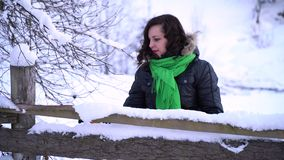 Den unga härliga flickan i vinterskog flickan ser dettäckte trädet Hon trycker på de snöig filialerna med arkivfilmer