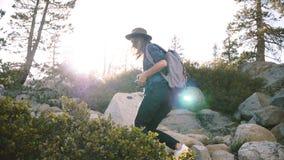 Den unga härliga lokala flickan med ryggsäcken och kameran som bara fotvandrar, att klättra som är stort, vaggar på Yosemite skog arkivfilmer