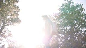 Den unga härliga turist- flickan med ryggsäcken och kameran som bara fotvandrar på stort, vaggar på Yosemite nationalparkultrarap stock video