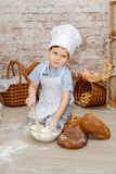 Den unga kocken Royaltyfria Foton