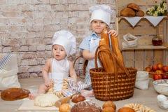 Den unga kocken Fotografering för Bildbyråer