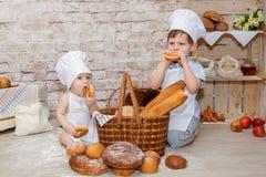 Den unga kocken royaltyfri fotografi