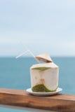 Den unga kokosnötuppfriskningdrinken kyler Arkivfoton