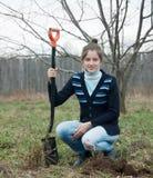 Trädgårdsmästare som planterar den utomhus- treen Royaltyfri Bild