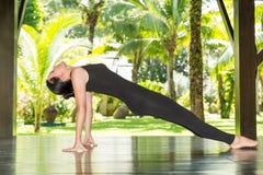 Den unga kvinnan är praktiserande yoga och pilates på naturen Arkivfoto