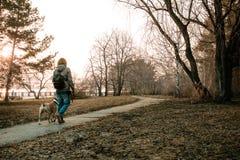 Den unga kvinnan går med hennes hund i aftonen parkerar Royaltyfri Bild