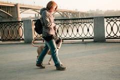 Den unga kvinnan går med hennes hund i aftonen parkerar Royaltyfri Fotografi