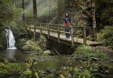 Den unga kvinnan i skog går på en bro Arkivbild