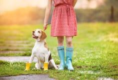 Den unga kvinnan i wellies går hennes hund Royaltyfria Foton