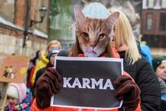 Den unga kvinnan med kattmaskeringen på framsida, har en teckenKARMA i hennes händer, under 'mars för djur i Riga, Lettland royaltyfri fotografi