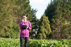 Den unga kvinnan poppar jordgubben in i mun, medan välja Arkivbilder