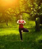 Den unga kvinnan som balanserar i träd, poserar praktiserande yoga Arkivbild