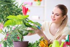 Den unga kvinnan som bevattnar växter i henne som är trädgårds- arkivfoton