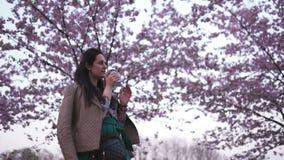 Den unga kvinnan som g?r i, parkerar med att blomstra sakura som dricker kaffe fr?n dr?mma f?r pappers- kopp stock video
