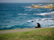 Den unga kvinnan som sitter på grönt gräs på, parkerar, läsning som har uppsikt över en sikt av havet och den Jaffa hamnen arkivfoton