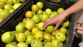 Den unga kvinnan som väljer äpplen i en supermarket, valde från organisk lantgård arkivfoto