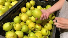 Den unga kvinnan som väljer äpplen i en supermarket, valde från organisk lantgård Slowmotion 4K lager videofilmer