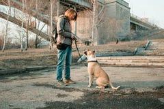 Den unga kvinnan utbildar hennes hund i aftonen parkerar Royaltyfri Fotografi