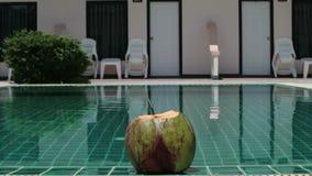 Den unga kvinnan vilar i pölen och dricker coctailen från kokosnöten på en tropisk semesterort stock video