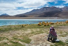 Den unga kvinnliga handelsresanden observerar fåglar i en höglands- sjö - birdwatching Arkivbilder