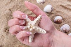 Den unga kvinnliga handen med stil för fransk manikyr spikar på den hållande sjöstjärnan och den sandiga stranden royaltyfri bild