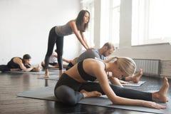 Den unga kvinnliga yogainstruktören som undervisar Janu Sirsasana, poserar för gr royaltyfria bilder