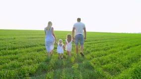 Den unga lyckliga familjen av fyra går på ett grönt fält med två barn Familj med childs, ungar som går på sommarfält stock video