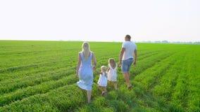 Den unga lyckliga familjen av fyra går på ett grönt fält med två barn Familj med childs, ungar som går på sommarfält lager videofilmer