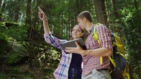Den unga mannen och kvinnan ser vägen på minnestavlan De står i ett pittoreskt ställe i skogriktningen Royaltyfri Foto