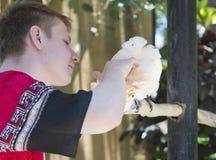 Den unga mannen skrapar en vit kakaduapapegoja på en snut fotografering för bildbyråer