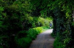 Den unga mannen som in joggar, parkerar på vattenkanaler, i att woka Arkivbild