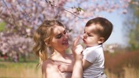 Den unga modermamman som rymmer hennes litet, behandla som ett barn sonpojkebarnet under att blomstra SAKURA Cherry träd med fall arkivfilmer