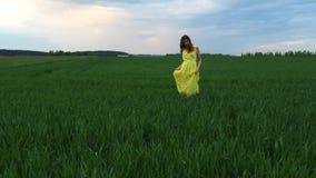 Den unga nätta kvinnan i en gul klänning går på grönt fält med högväxt gräs arkivfilmer