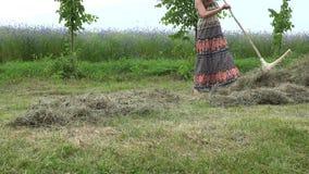 Den unga nätta kvinnan i klänning krattar torrt gräs för hö nära blåklintfält 4K stock video