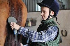 Den unga pojken ansar hästen Arkivbild