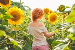 Den unga redheaded kvinnan i ett fält av solrosor står tillbaka, baksidan arkivbild