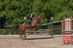 Den unga skickliga ryttarinnan hoppar på det rid- loppet Royaltyfri Foto