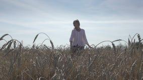 Den unga spensliga kvinnan med ett långt ganska hår i en vit skjorta och jeans går över fältet av moget vete till solig sommar lager videofilmer