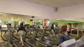 Den unga sportkvinnan utarbetar i idrottshall Cardio utbildning running treadmill arkivfilmer