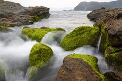Den unika landformen och det stora landskapet av den Taiwan norrkusten royaltyfri foto