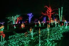 Den upplysta ferieträdgården tänder jul royaltyfri bild
