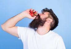 Den uppsökte hipsteren rymmer jordgubbar i näve som fruktsaftflaskan nytt fruktsaftbegrepp Den uppsökte mannen dricker jordgubbef Arkivbilder