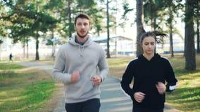 Den uppsökte unga mannen joggar med hans kvinnliga vän parkerar in att öva den koncentrerade utomhus bärande moderna sportswearen stock video