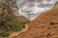 Den UT-Zion medborgaren parkerar-Zion kanjonen Arkivbild