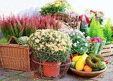 Den utvändiga blomsterhandlaren shoppar Royaltyfria Foton
