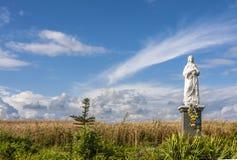 Den välsignade jungfruliga statyetten i fältet, Polen Royaltyfria Foton