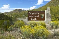 Den västra Saguaronationalparken, Tucson, välkommet tecken för AZ presenterar kaktuns för den jätteSonoran saguaroen Fotografering för Bildbyråer