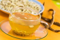 den växt- marshmallowmedicinen rotar tea royaltyfri foto