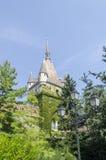 Den Vajdahunjad slotten i Budapest, Ungern Royaltyfri Fotografi